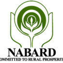 NABARD Grade B Recruitment 2017